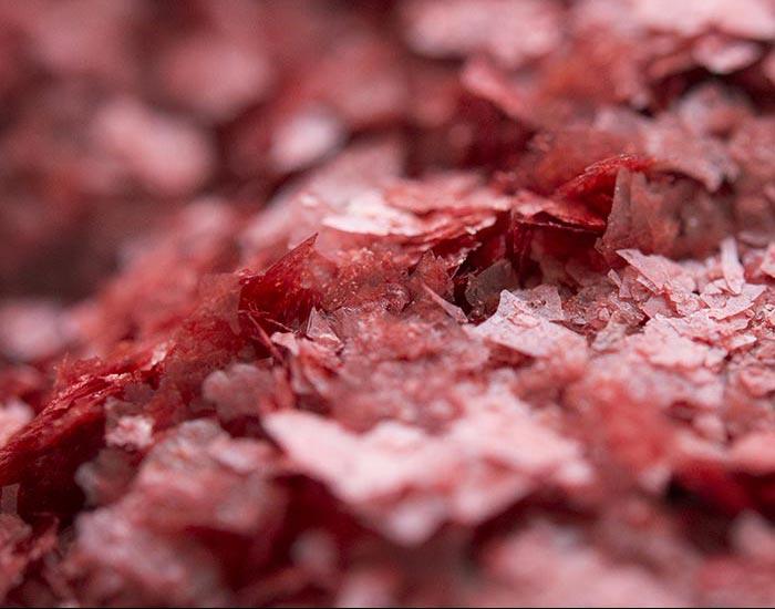 macrophotographie de flocon de fraise